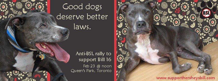 Good Dogs Deserve Better Poster
