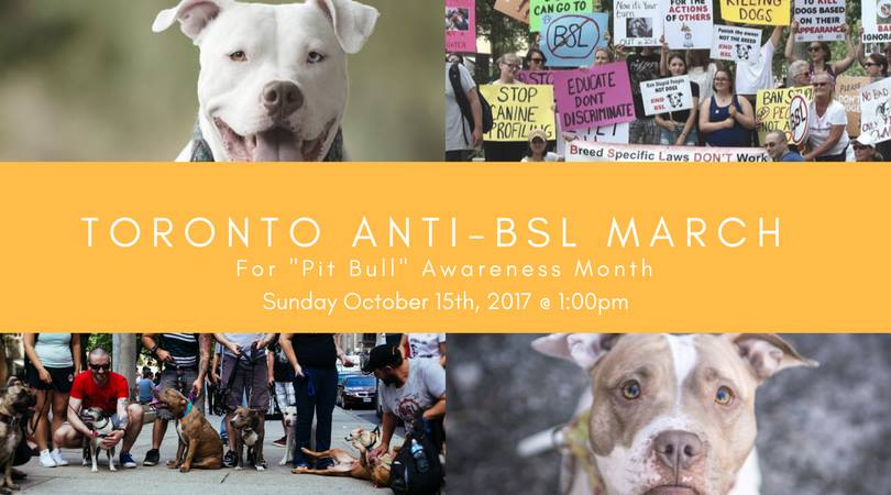Toronto BSL March